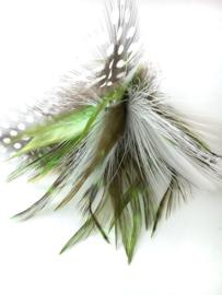 Vervanging CatLovin' Zwart/Wit/Groen
