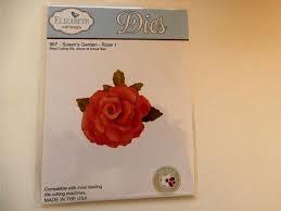 susan's garden rose
