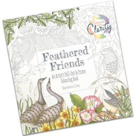 feathered-friends colouring book