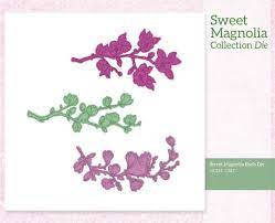 sweet magnolia buds die