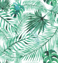 white tropical leaves van stafil