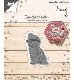 Franciens kerst kitten