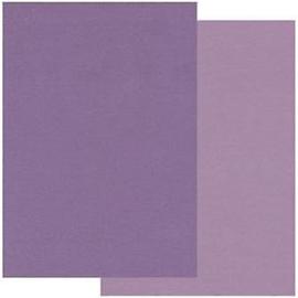 2 kleuren paars