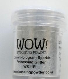 silver Hologram Sparkle WS 11R