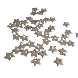 Bedel stainless steel klein sterretje