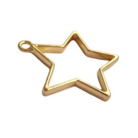 Hanger ster goud