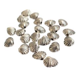 Kraal schelpje