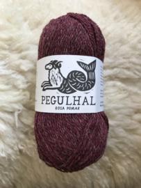 Pegulhal 05