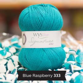 WYS 4ply Sock blue raspberry