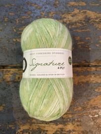WYS 4 ply sock 803 gypsophila