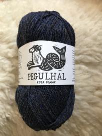 Pegulhal 07