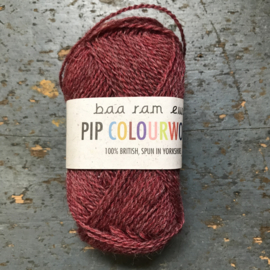 Pip colourwork 023 rose window