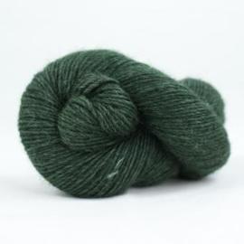 Wild Wool Brisk 705