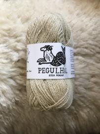 Pegulhal 01