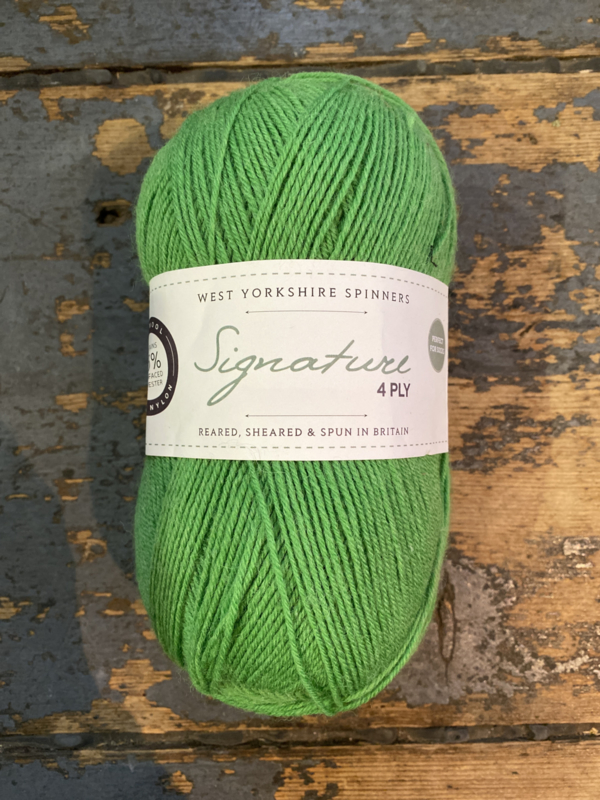 WYS 4ply Sock chocolate lime 395