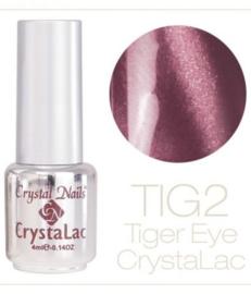 CN | Tigereye 2