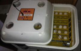 Budget broedmachine - Bator Iso 42