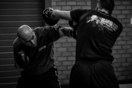 Specific Intensive Course - Striking for Krav Maga