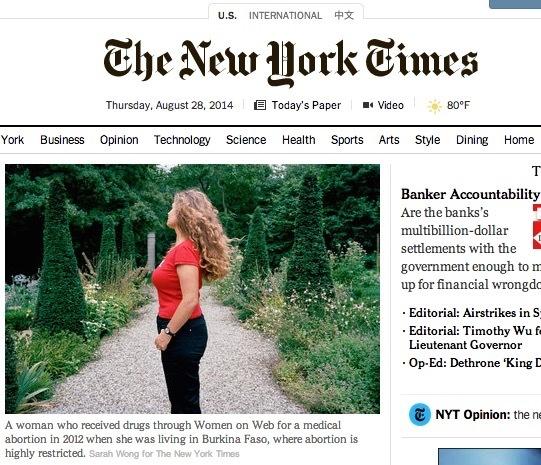 NYT Screen Shot.jpg