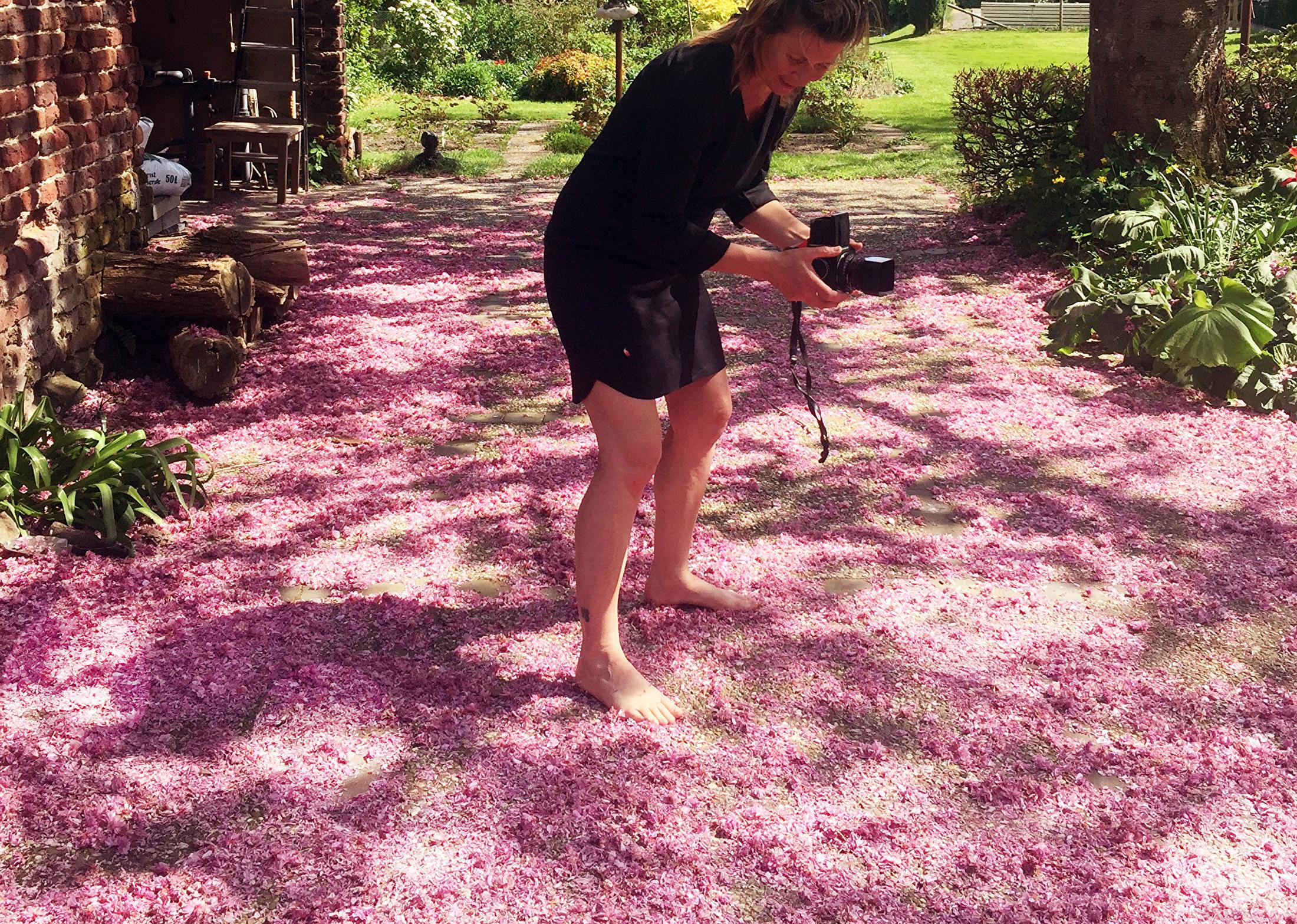 blossom_homegarden