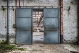 Wandkleed Spinning Doors