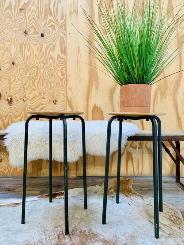 Schoolkrukje | plantenkrukje