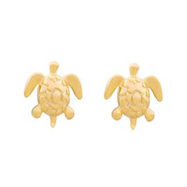 Oorstekers schildpad goud