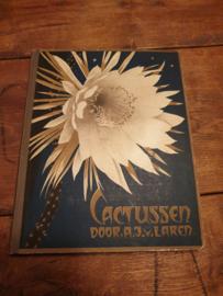 Plaatjesalbum cactussen 1931 Verkade