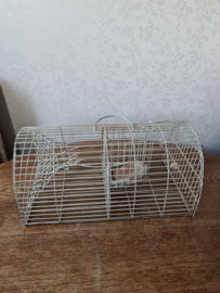 Oude vangkooi ratten