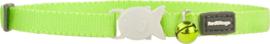 Halsbandje kitten - Lime Green