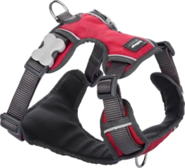 Padded Harness Rood