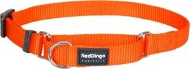 Halsband Martingale - Oranje