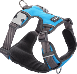 Padded Harness Turquoise