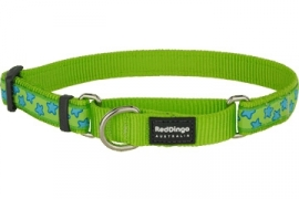 Halsband Martingale - Stars Turquoise on Lime Green