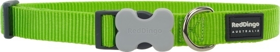 Halsband Hond - Lime Green