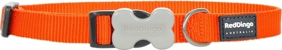 Halsband Hond - Oranje