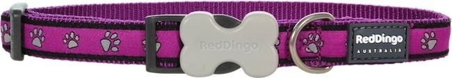 Halsband Hond - Paw Prints Purple
