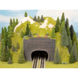 Noch 34800# Voorzet portaal dubbel spoor