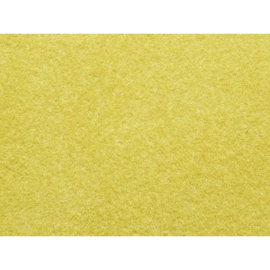 Noch 07083. Wildgras goud/geel