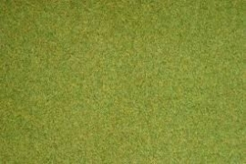 Noch 00010 # Grasmat, Lente groen