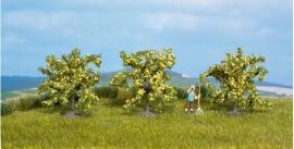 Noch 25115 # Citroenbomen, 3 stuks (4 cm)