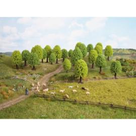 Noch 26801#Loofbomen groen 25 stuks 5-9cm