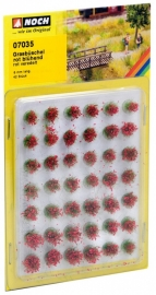 Noch 07035 : Rood bloeiende graspollen, 42 stuks