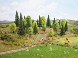 Noch 26811# Gemengde bomenn 25 stuks (5-14cm)