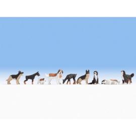 Noch 36717 # Honden, 9 stuks N