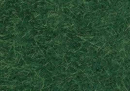 Noch 07126 # Wild gras, donkergroen