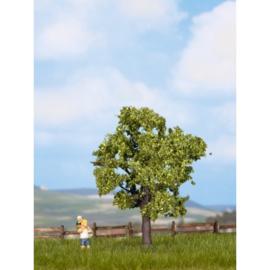 Noch 21550# Fruitboom