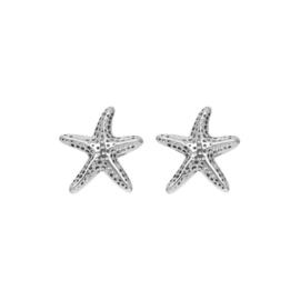 iXXXi oorknopjes, sea star zilver