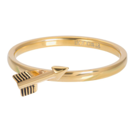 Ring Symbol Arrow ; goudkleurig