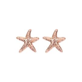 iXXXi oorknopjes, sea star roségoud